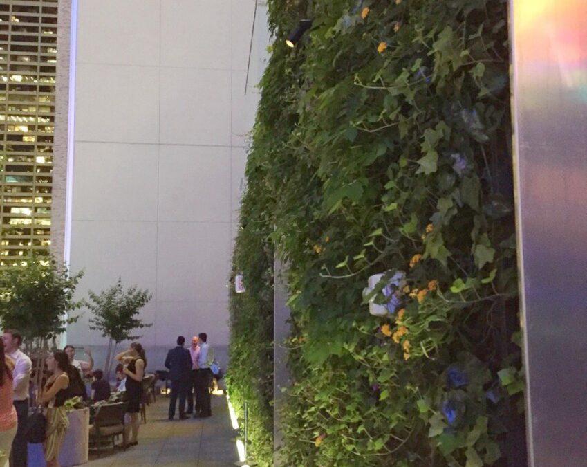 Jardins verticais trazem vida à cobertura de hotel no centro de Nova Iorque