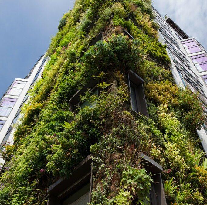 Jardim vertical: conheça as paredes verdes de Patrick Blanc na França