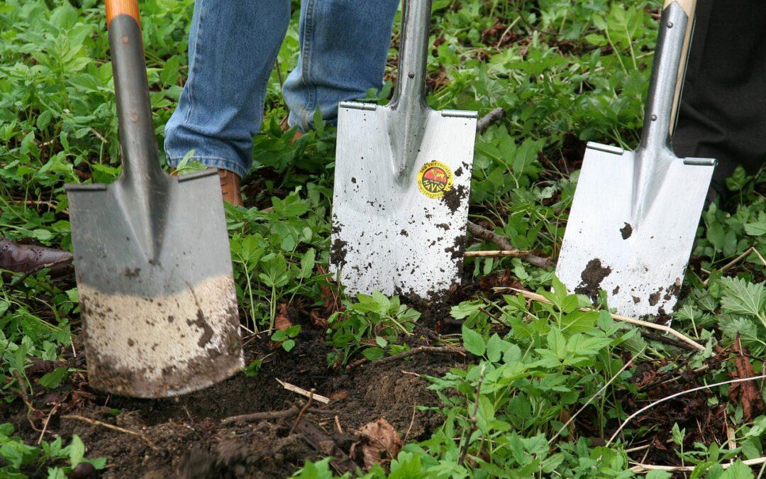 Conheça ferramentas para fazer o jardim – Plantar com pá -1