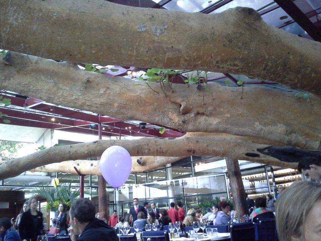 A Figueira Rubaiyat - galhos sobre o restaurante