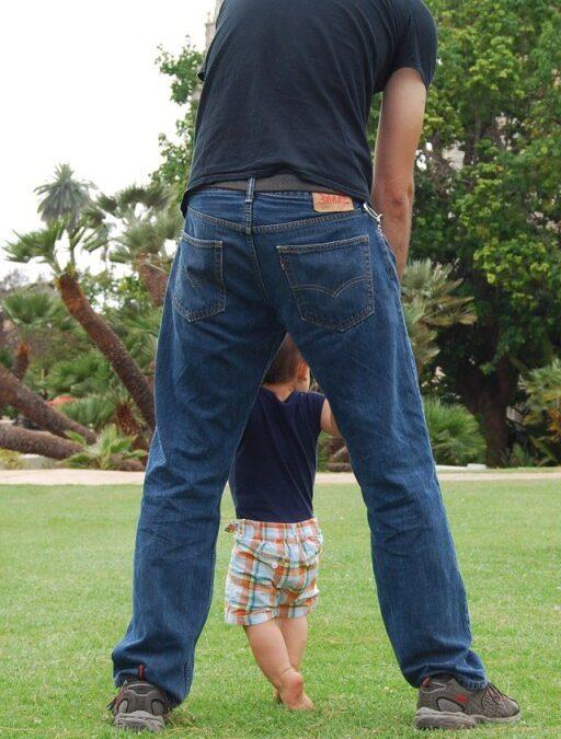 No dia dos Pais ofereça um presente para toda vida: plante uma árvore