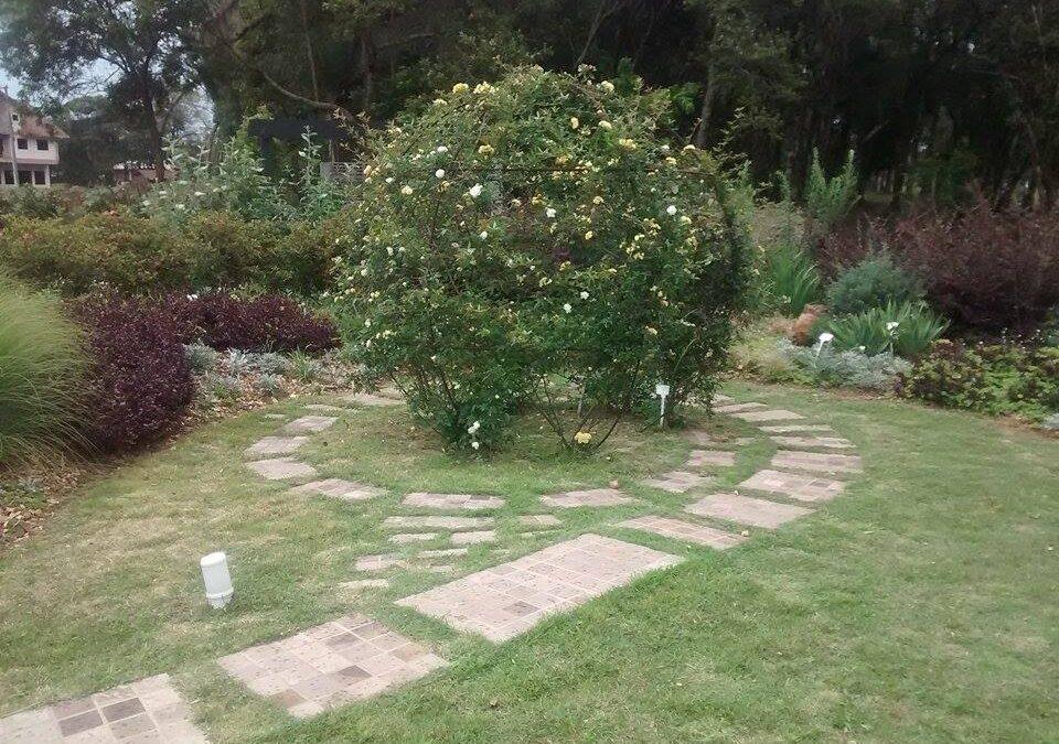 Sabia que o jardim pode curar as pessoas e o ambiente? Conheça o paisagismo regenerativo