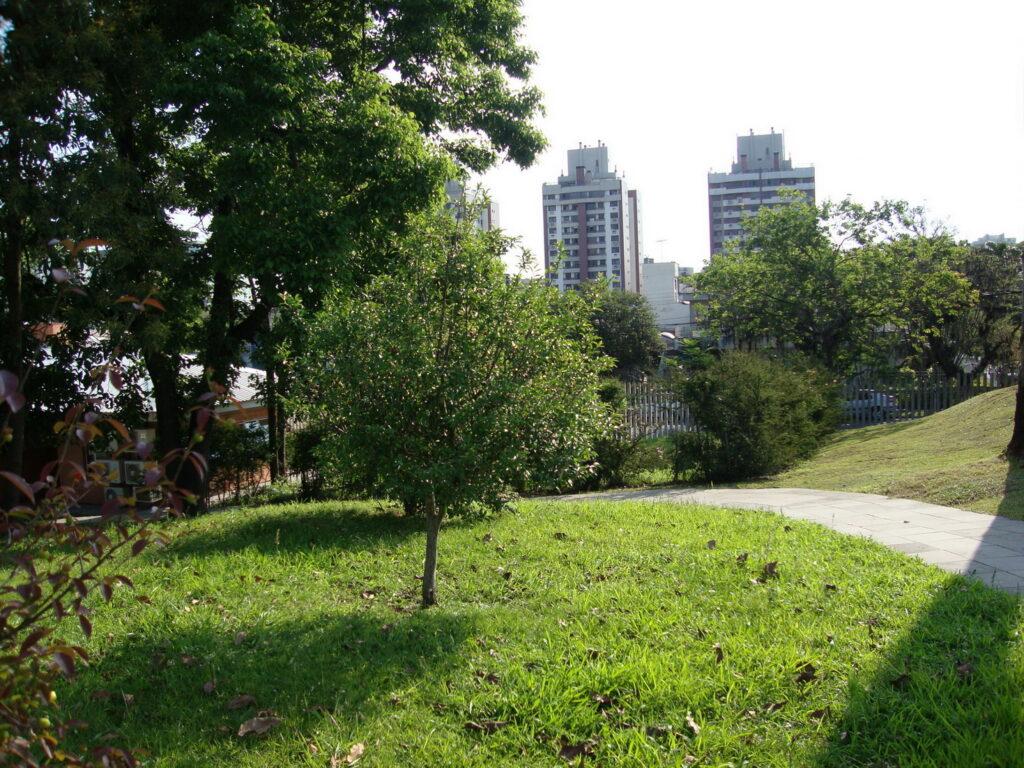 cerejeira geral