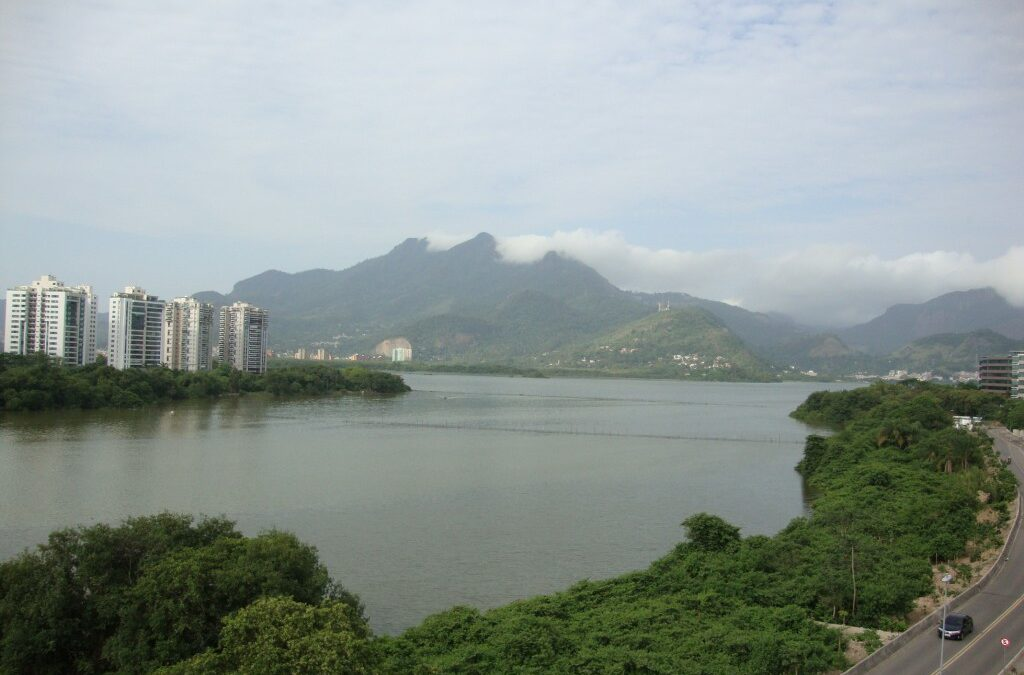 Mangue e a urbanização convivem na Barra da Tijuca