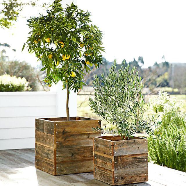 Ideias-para-o-jardim-com-paletes- www.mostardela.com