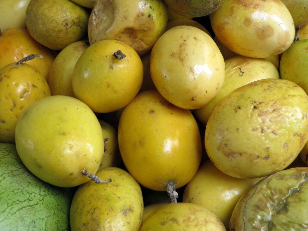 Fruto do maracujá