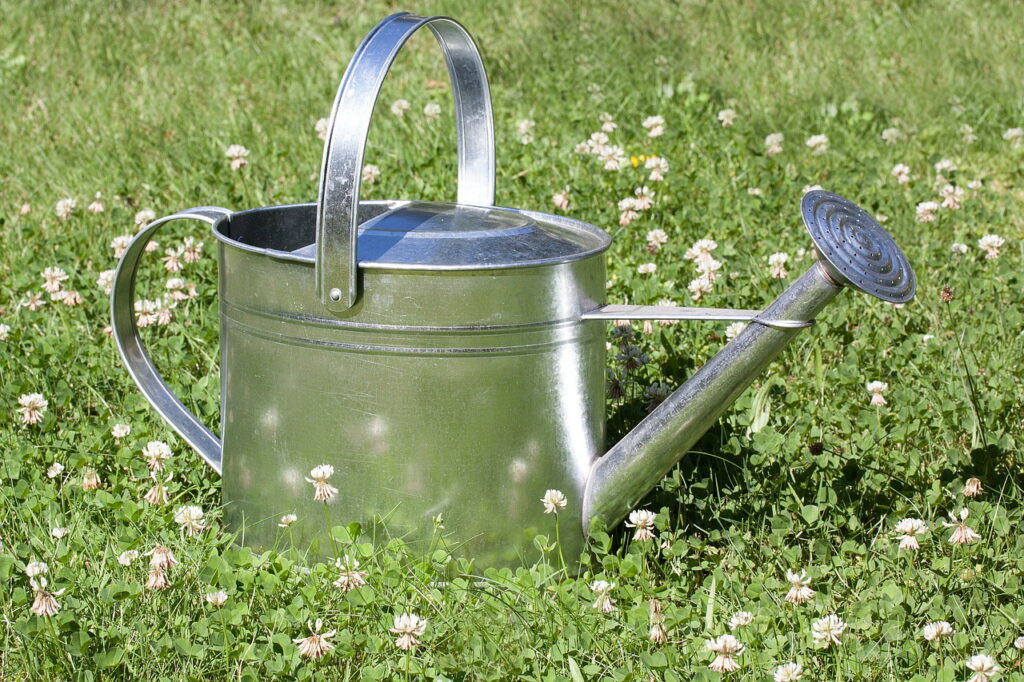 watering-can-397290_1280  pixabay