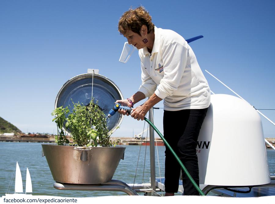 Já pensou plantar uma horta em alto mar ? A Familia Schurmann planta!