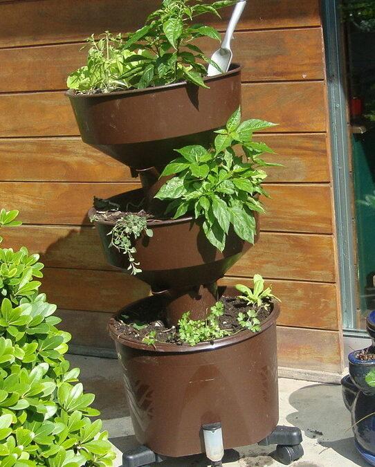 Quer ter uma horta vertical em casa com alface, pimenta e salsinha?