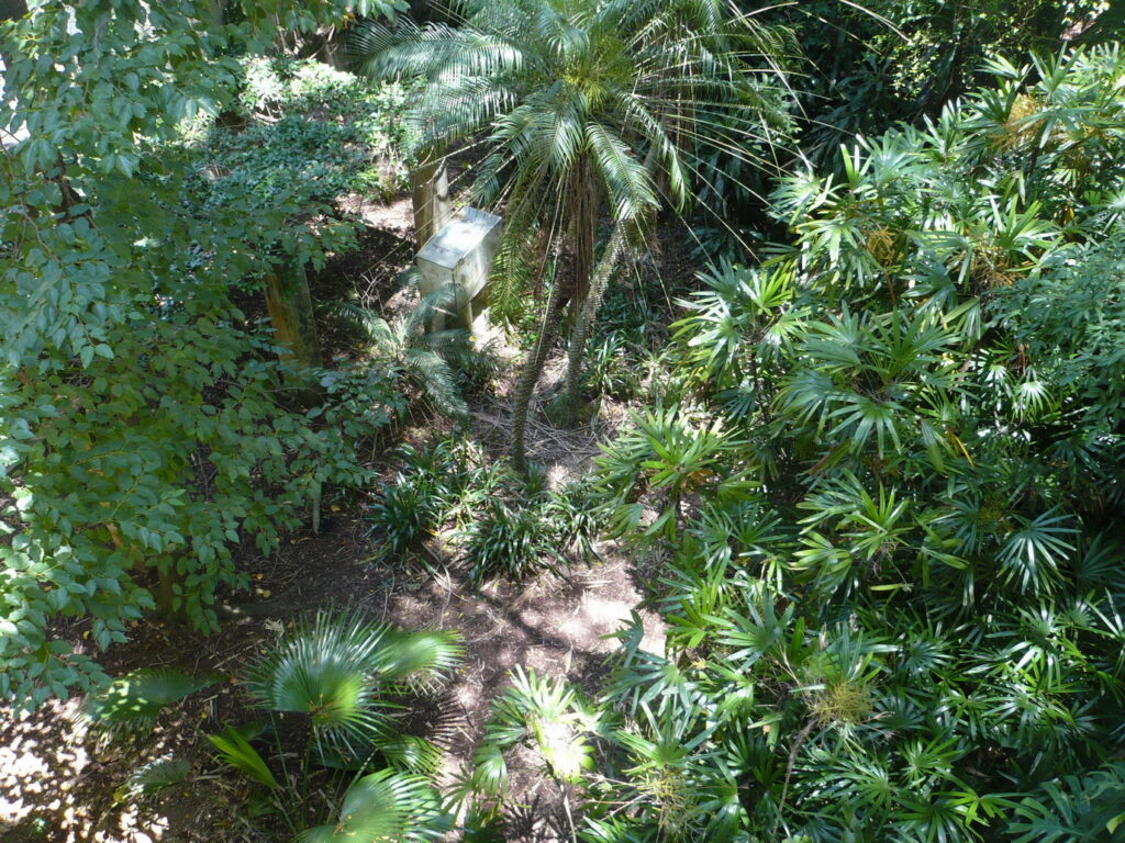 jardim de cima