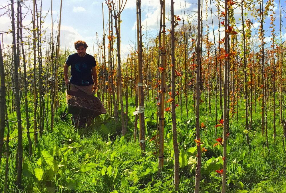 Conheça uma universidade de agricultura orgânica e sustentável na Holanda