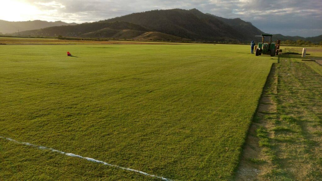 Plantando gramados  para os jogos olimpicos  foto: Maristela Kuhn