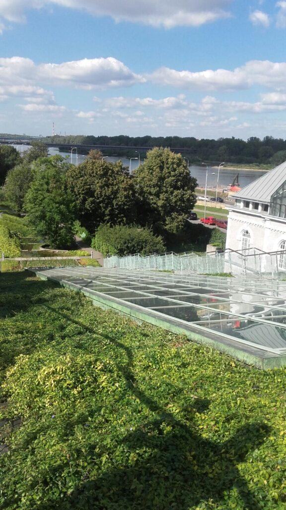 Parque no telhado da biblioteca da universidade de Varsóvia   foto: Dora Schanzer