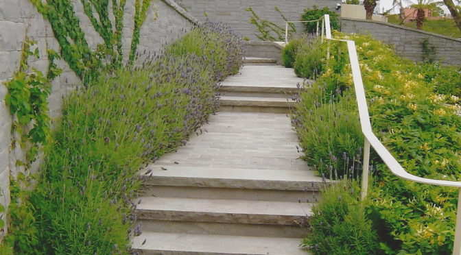 Projetos de paisagismo em residencias