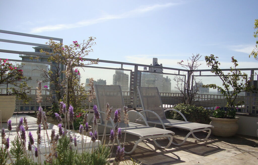 Jardins em coberturas: plantas que resistem