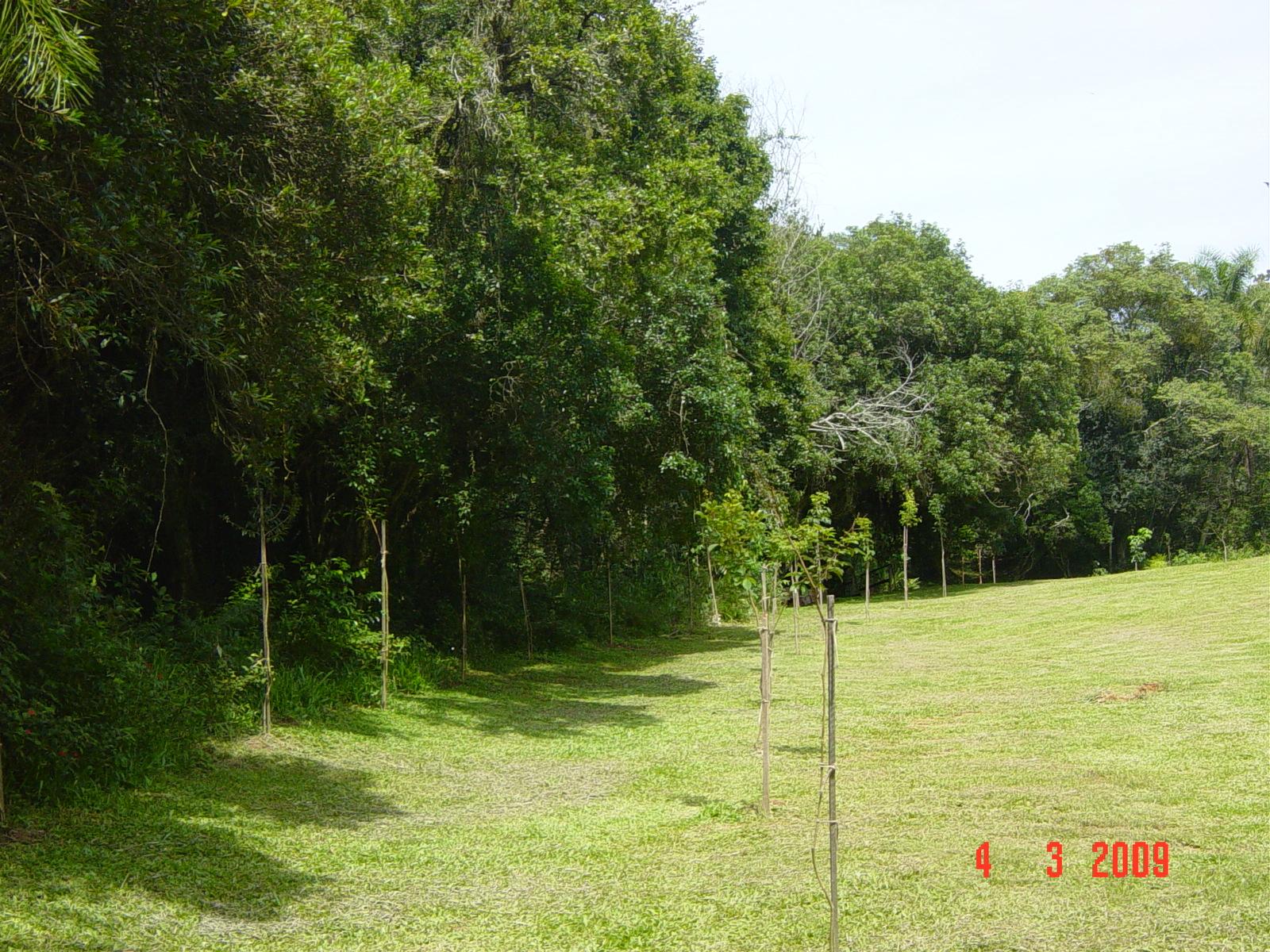 Trilha na APP - Área de preservação permanente
