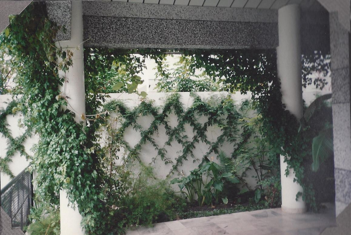 trelica para jardim porto alegre ? Doitri.com