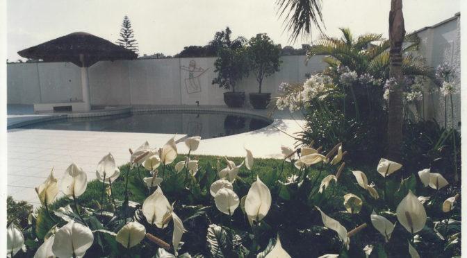 Jardim residencial com flores brancas