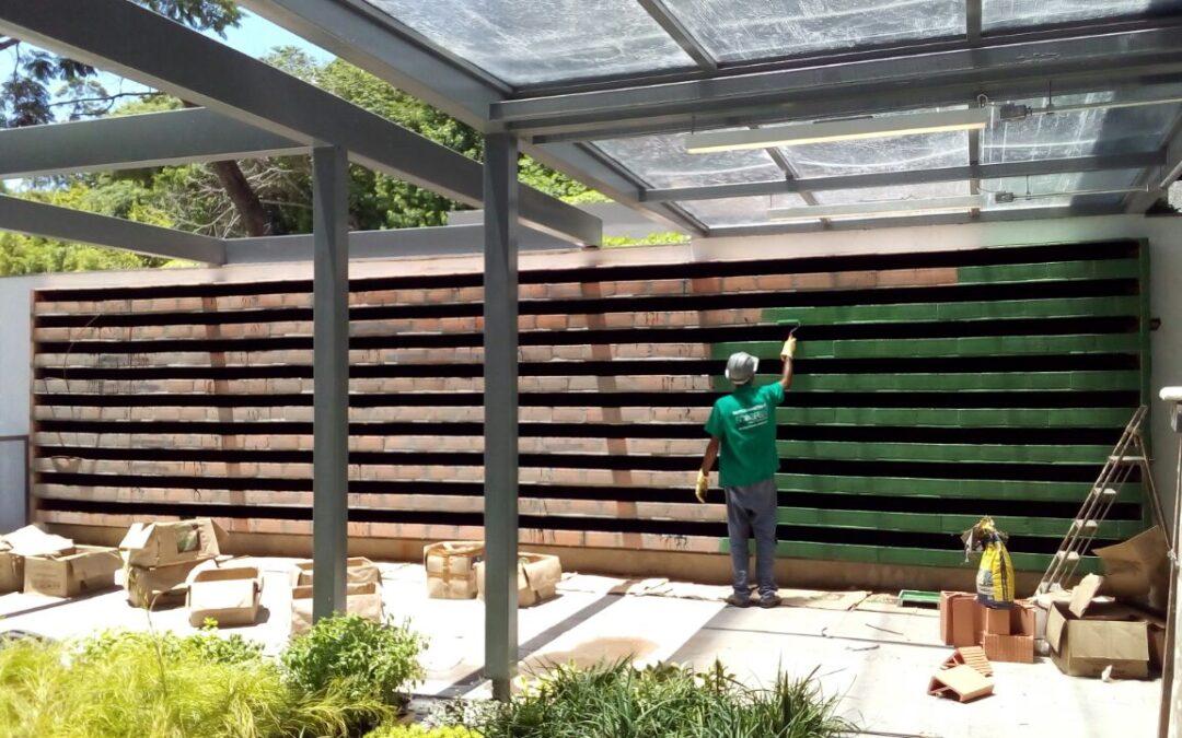 Plantas transformam muro em jardim vertical, veja!