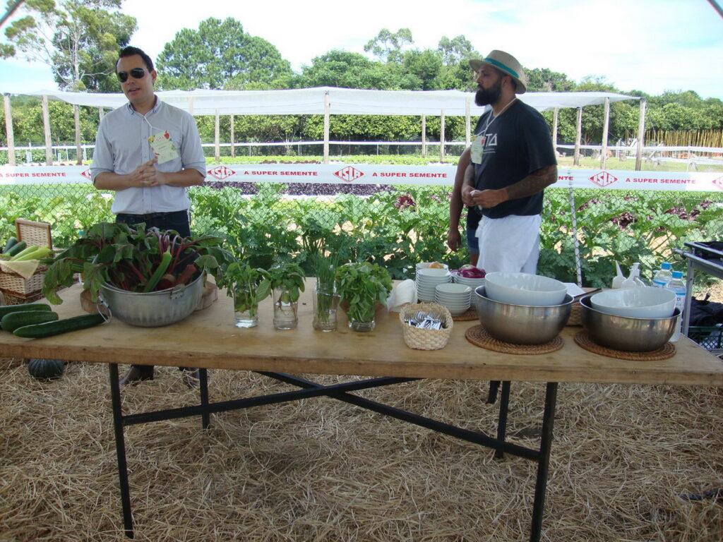 chefs e o uso dos manjericões