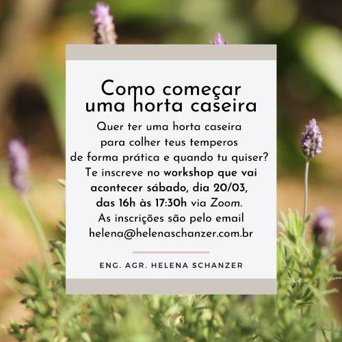 Workshop online: Como fazer uma horta caseira